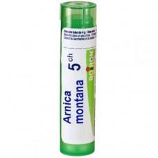 Boiron, Single Remedies, Arnica Montana, 5CH, Approx 80 Pellets