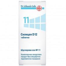 Schusslers Salts N 11 Silicea D12 x 80